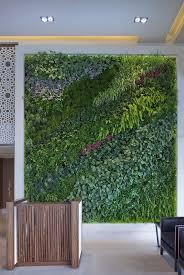 1113 best green walls images on pinterest vertical gardens
