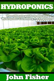 the ultimate guide on how to find cheap flights dang home design ideas cheap hydroponics growing plants find