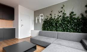 indoor climbing plant ideas