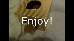 Hamster Bed How To Make A Hamster Bed Hut Youtube