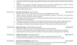 resume wonderful design resume example 11 samples wonderful