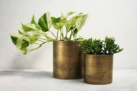 Aluminium Vases Vases Plant Pots And Planters Sheridan