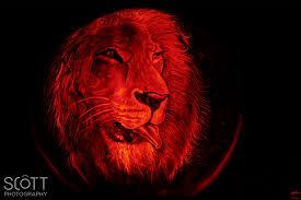 lion pumpkin carving jack o lantern spectacular 2014 scott sousa