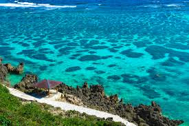 Hawaii the travelers images Photos of okinawa which will soon get more travelers than hawaii jpg
