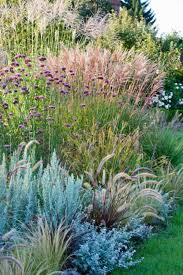mixing together different types of ornamental grasses always creates