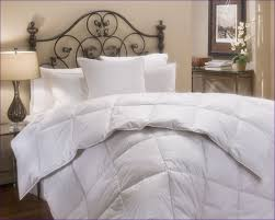 Best Down Comforter Reviews Bedroom Magnificent Clara Duvet Cover All Season Down Comforter