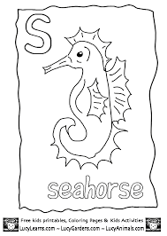 seahorse coloring pages many interesting cliparts