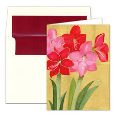 caspari cards caspari personalized amaryllis christmas greeting cards paperstyle