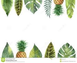 Pineapple Decorations For Kitchen by Pineapple Kitchen Decor Instadecor Us