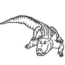 Black U0026 White Clipart Alligator Pencil And In Color Black
