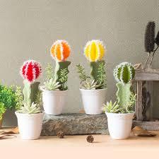 china bonsai cactus china bonsai cactus shopping guide at alibaba