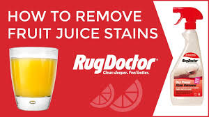 Rug Doctor Repair Center How To Remove Fruit Juice Stains From Carpets Rug Doctor Youtube
