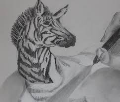 drawing zebra effect 3d realistic youtube