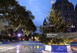 Swarovski Christmas Decorations 2015 by Natural History Museum Swarovski Ice Rink Launch Photos And Images