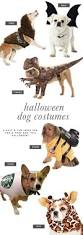 party city lubbock halloween costumes 6 dog halloween costume ideas for you u0026 your pooch dog halloween