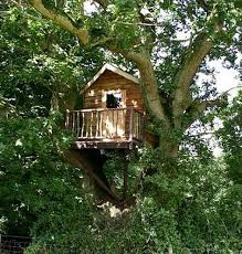 Simple Backyard Tree Houses by 93 Best Tree Houses And Forts Images On Pinterest Architecture