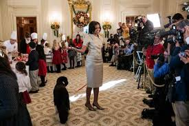 White House Dog Christmas Decorations by Bo Michelle Obama Pictures Photos Of The First Lady Part 4