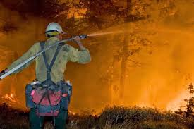 fighting on thanksgiving wildfire today