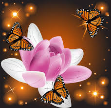 beautiful lotus flower with butterflies stock photo image of