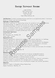 plumber resume examples resume format for land surveyor surveyor resume plumber resume objectives for nurse practitioner