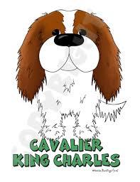 blenheim cavalier king charles spaniel big nose shirts more