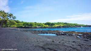 black sand beach hawaii punaluu black sand beach park beaches on big island pahala hawaii