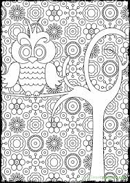 coloring page for adults owl advanced coloring pages for adults 10721