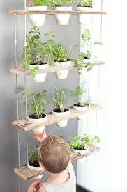 indoor herb garden kits to grow herbs indoors hgtv grow an herb garden indoors how to start an herb garden indoors