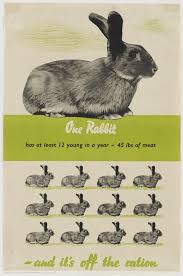rabbit poster moma rabbit rabbit