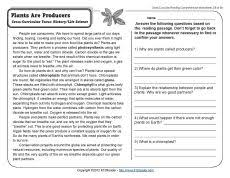 plants are producers reading comprehension worksheets