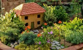 my mini backyard garden sustainably organic phoenix loversiq
