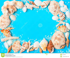 assorted seashells frame from assorted seashells and corals on blue background stock