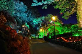 Colored Landscape Lighting Colored Lens Outdoor Lighting Outdoor Lighting