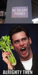 Jim Carrey Meme Alrighty Then - alrighty then funny jim carrey dump a day