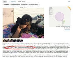 rover com exposes internet dog scams rover com