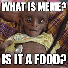 Meme What Is It - what is meme is it a food hungry african child quickmeme