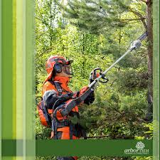 arboriculture courses in melbourne arbortrim training