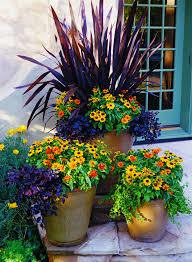 Patio Container Garden Ideas Patio Container Garden Ideas Outdoor Goods