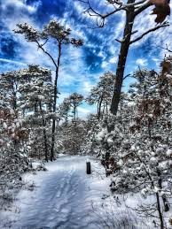 wiley park in eastham on cape cod after a light snow cape cod