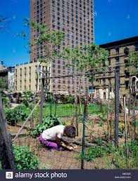 Urban Gardening New York 1980s New York City Woman Stock Photos U0026 1980s New York City Woman