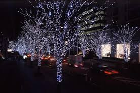 beautiful decoration lights for outdoor trees for