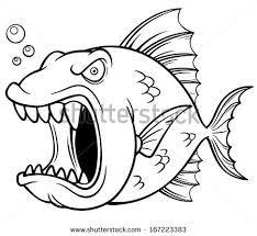 angry fish stock images royalty free images u0026 vectors shutterstock