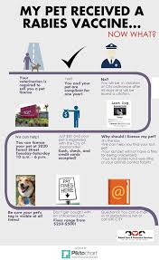 coj net license your pet