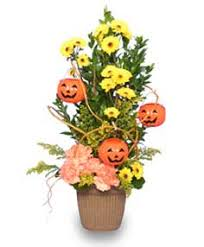 jack o u0027 lantern tree halloween flowers halloween flower shop