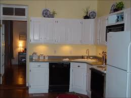 Professional Kitchen Cabinet Painting 100 Painting Stained Kitchen Cabinets Furniture Simple