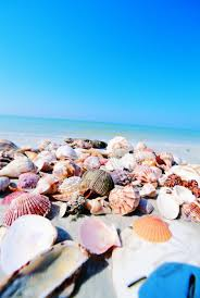 14 surprising facts about fort myers and sanibel fl fort myers
