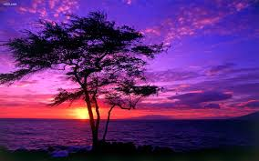 beutifull beautiful purple sky at sunset 4239942 1920x1200 all for desktop