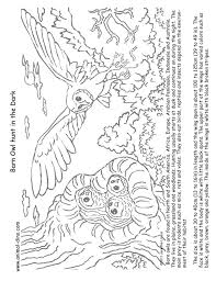 desert owl coloring page grassland animals coloring pages desert animals coloring page
