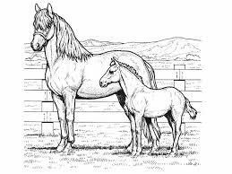 horse coloring pages for kids fablesfromthefriends com