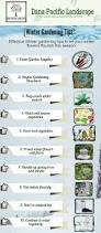 10 effective winter gardening tips you must know